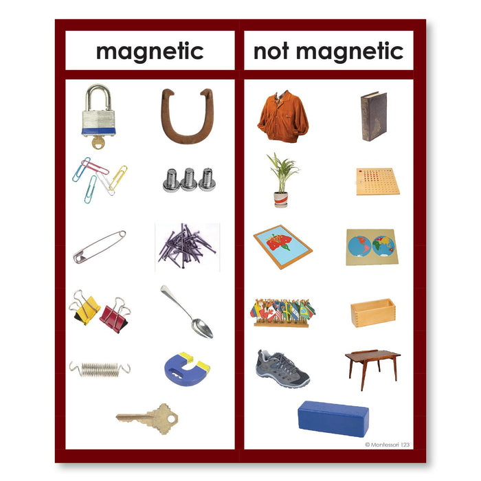 Physical Science-Physics/ Astronomy - Magnetic Or Non-magnetic Photograph Sorting Cards