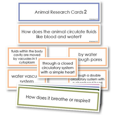 Zoology-Animal Classification/ Identification - Animal Research Classification Questions Level 2