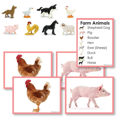 Zoology-Animal Classification/ Identification - Farm Animals Toddler Cards With Objects