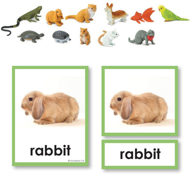 Zoology-Animal Classification/ Identification - Pets 3-Part Cards With Objects