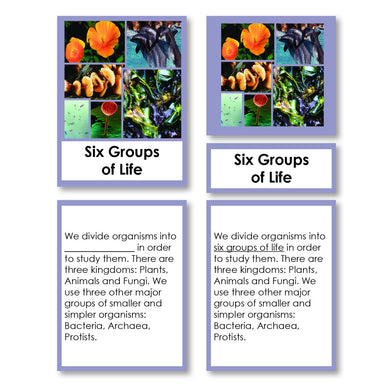 Zoology-Animal Classification/ Identification - Six Groups Of Life (kingdoms) Classification 3-Part Cards With Definitions