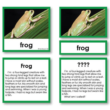 "Zoology-Animal Classification/ Identification - Zoology ""Who Am I?"" 3-Part Cards - Amphibians And Reptiles"