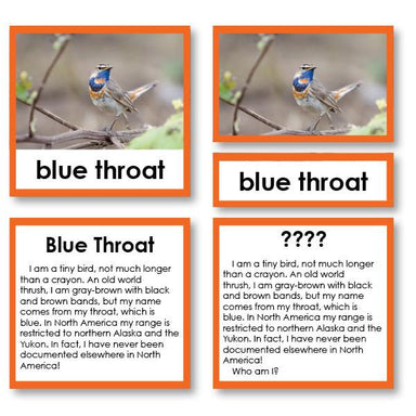 "Zoology-Animal Classification/ Identification - Zoology ""Who Am I?"" 3-Part Cards - Arctic Birds"