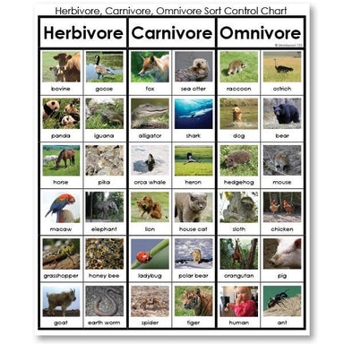 Zoology-Sorting Games - Herbivore, Carnivore Or Omnivore Sorting Cards