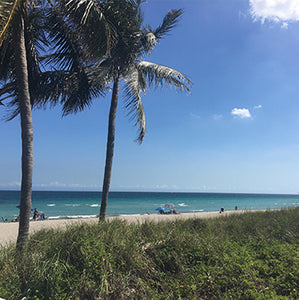 5 Secret Spots in Miami