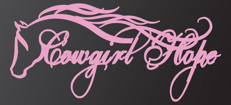 Cowgirl Dreams Co™. Cowgirl Hope Decal - Pink
