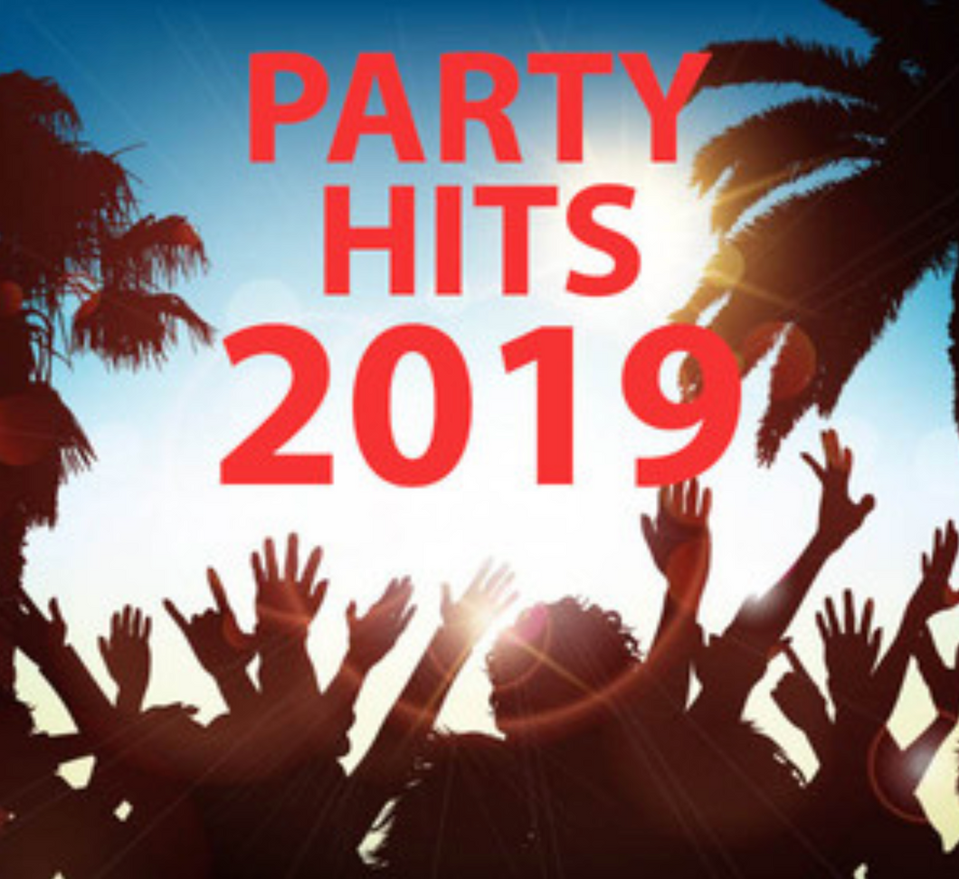 PARTY HITS 2019 | The best summer hits and party 2019| SUMMER 2019