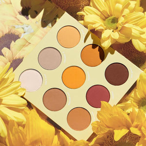 Lil Ray Of Sunshine palette