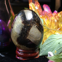 Septarian Dragon Stone Egg with Stand - The Whimsy Crystal Shop