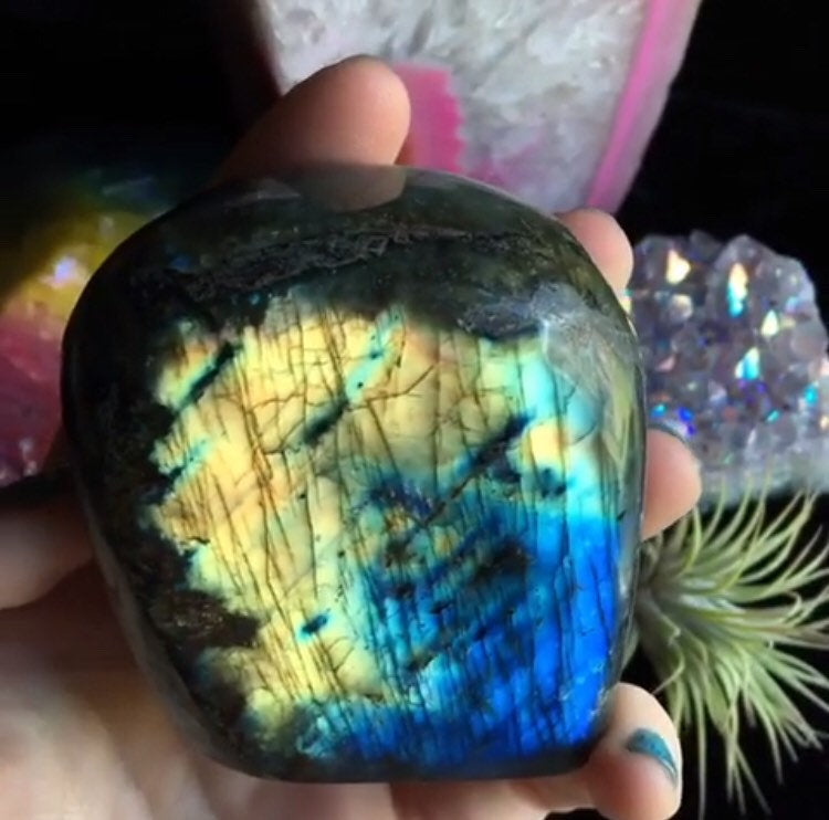 0.8lb Rainbow Labradorite Standing Freeform - The Whimsy Crystal Shop