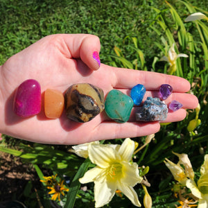 Chakra Set Bundle with Pink Agate, Carnelian, Septarian Dragon Tumbled Stone, Green Agate, Blue Aura Quartz, Blue Rough Apatite & Amethyst - The Whimsy Crystal Shop