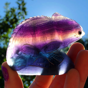 Fluorite Hand-Carved Chameleon Collectible - The Whimsy Crystal Shop