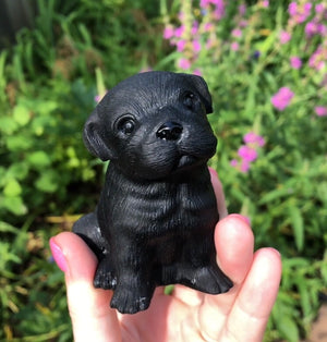 Hand Carved Black Obsidian Pup