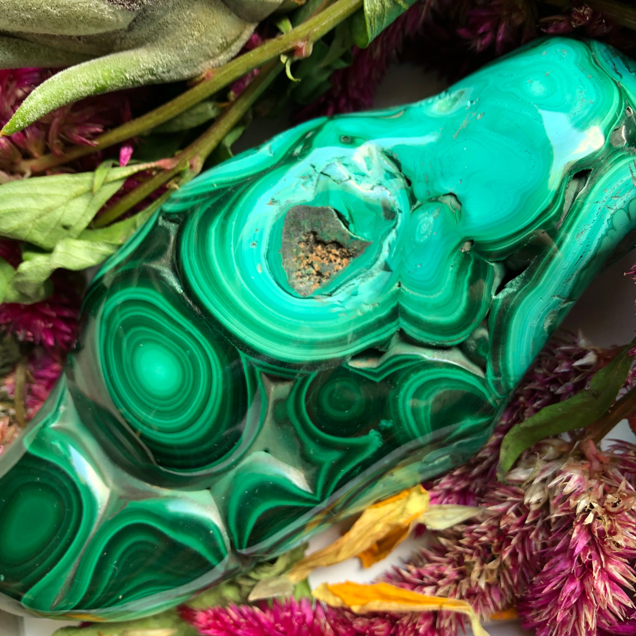 0.7LB Malachite Freeform - The Whimsy Crystal Shop