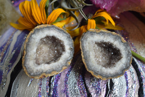 Pair of Agate Druzy Geodes - The Whimsy Crystal Shop