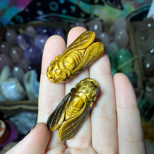 Reserved for Lacey Tigers Eye Cicada (Drilled) - The Whimsy Crystal Shop