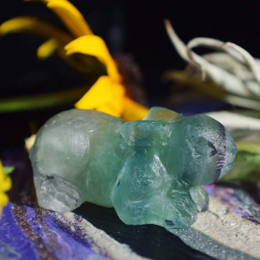 Hand Carved Fluorite Baby Rabbit Collectible - The Whimsy Crystal Shop