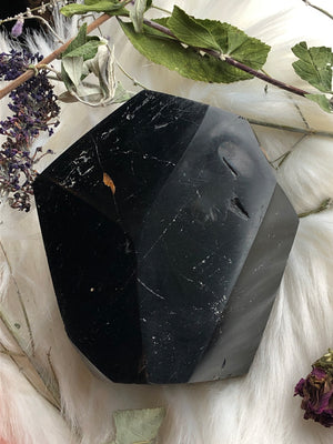 Large Faceted Self Standing Black Tourmaline Freeform