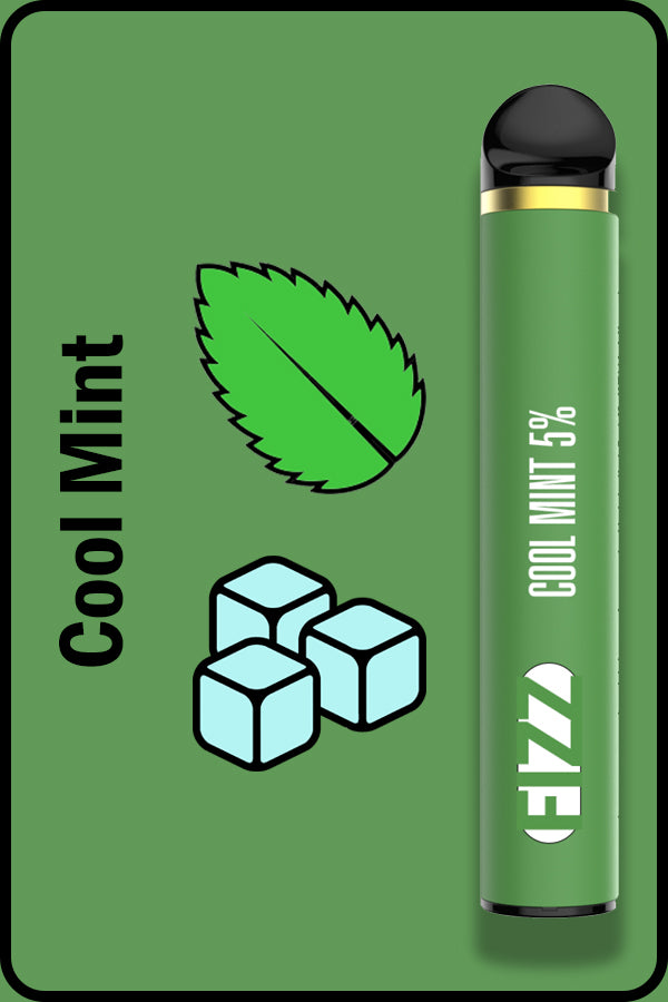 FIZZ 1600 XTRA - Cool Mint