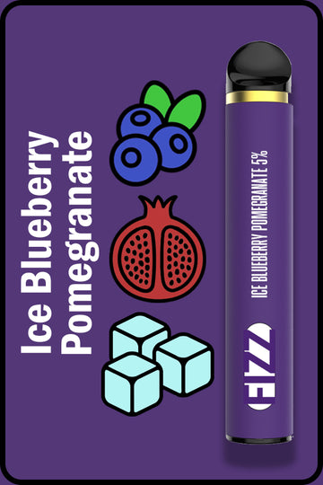 FIZZ 1600 XTRA - Ice Blueberry Pomegranate