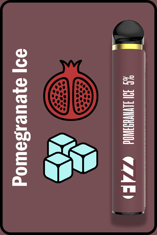FIZZ 1600 XTRA - Pomegranate Ice
