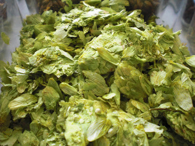 hops_close_up_1_.JPG