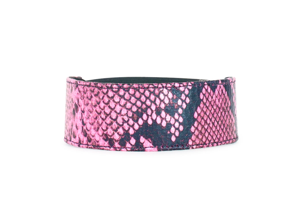 Pink and Black Python Accessory