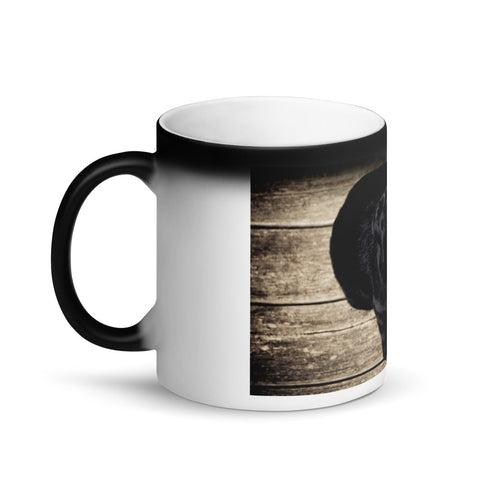 Cute Black Puppy Appearing Matte Black Magic Mug
