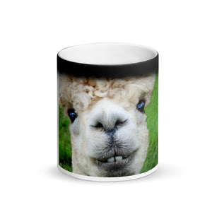 Funny Smiling Alpaca Matte Black Magic Mug