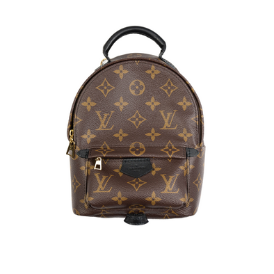 Louis Vuitton Monogram Palm Spring Mini Backpack