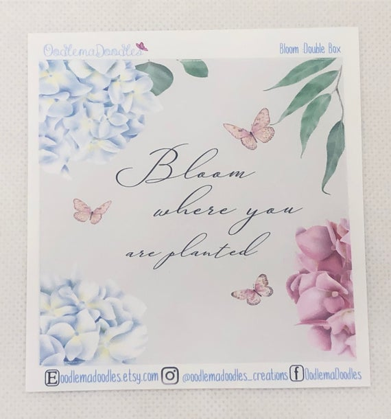 Farmhouse Bloom - Decorative Double Box Sticket