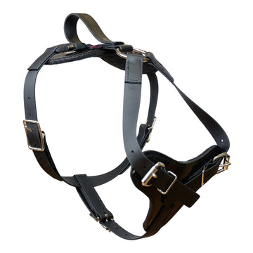 Padded All Weather Quick Release Harness