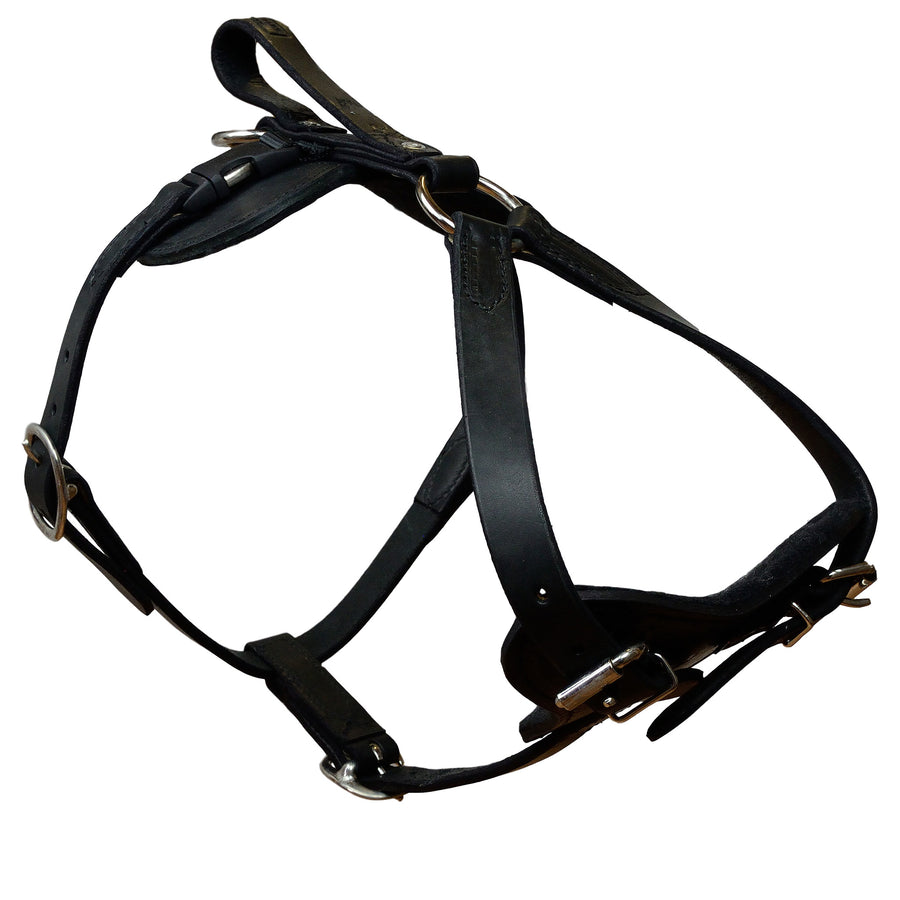Padded Leather Quick Release Harness