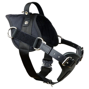 Yurkiw Harness With Cobra Buckle