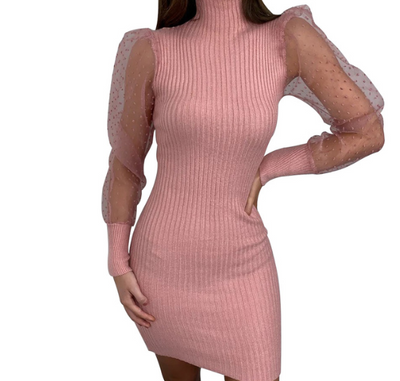 Mesh Long Sleeve Round Neck Slim Dress