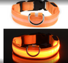 The Best Brands Waterproof LED Dog Collar