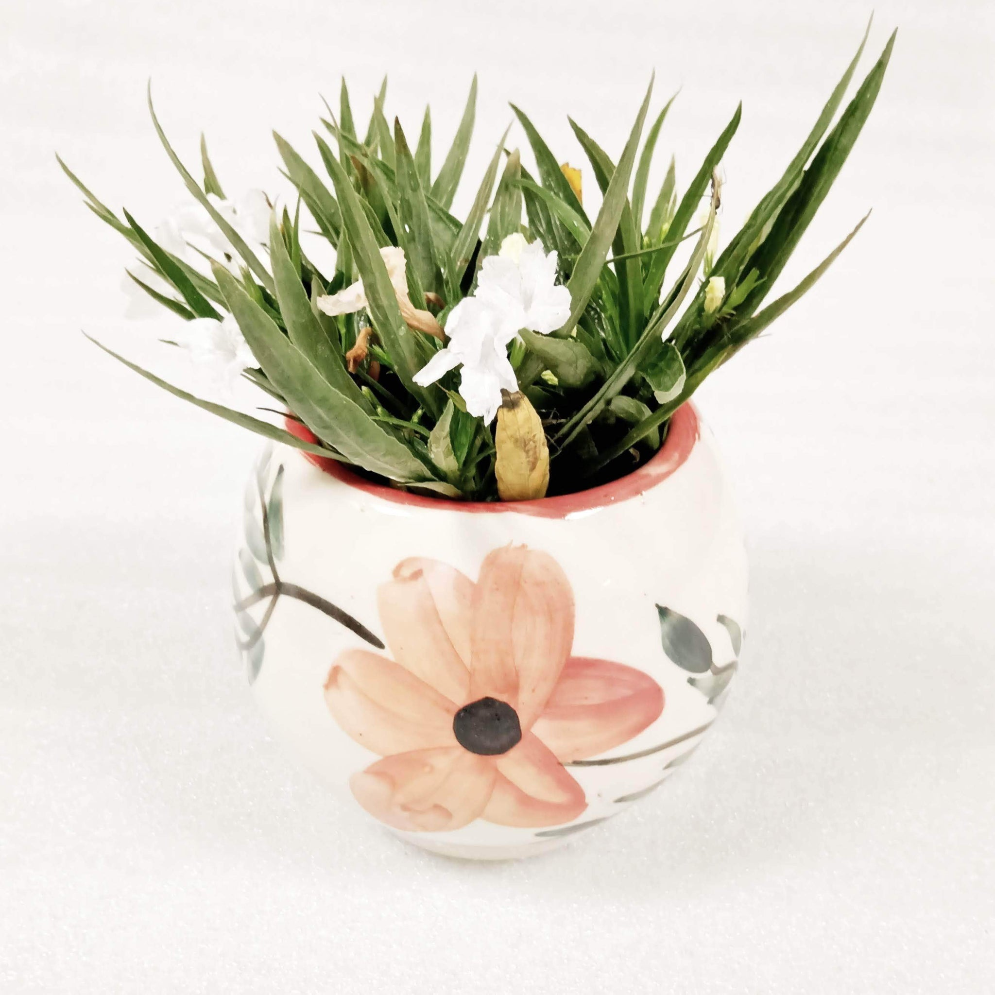 Hand Painted Ceramic Indoor Planter | Flower Pot Planter For Home BOGO