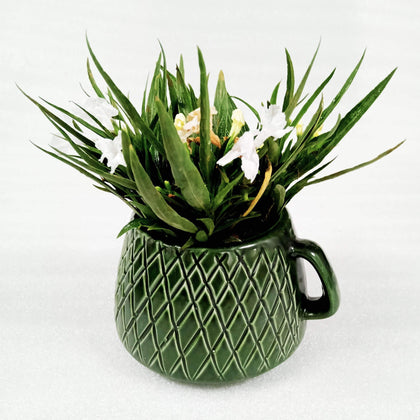 Ceramic Indoor Green Cup Planter| Handmade Flower Pot Planter For Home BOGO