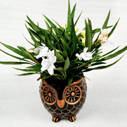 Copper Owl Shaped Indoor Modern Planter