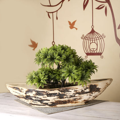 Ship Shaped Ceramic Indoor Window Planter