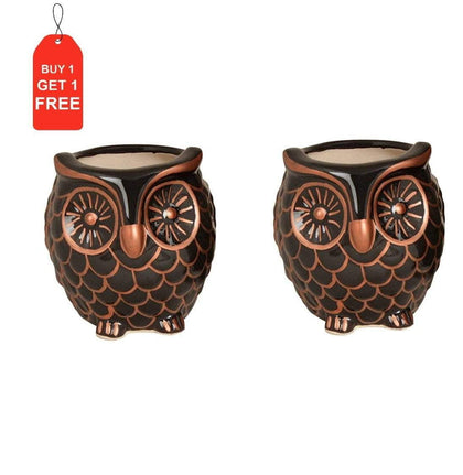 Black Copper Ceramic Owl Shaped Planter|BOGO