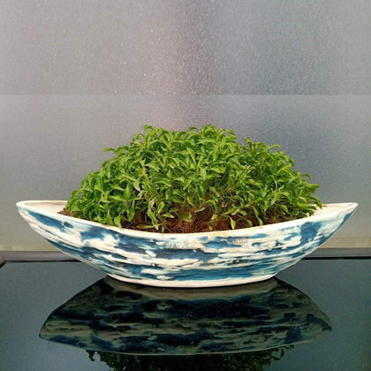 Blue Ship Shaped Ceramic Indoor Planter For Garden