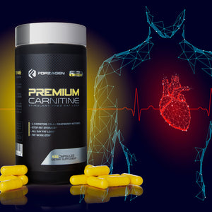 PREMIUM CARNITINE WITH CLA AND RASPBERRY KETONES