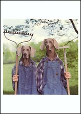 Farm Days, 1996 Postcards (Set of 12) - ImageExchange