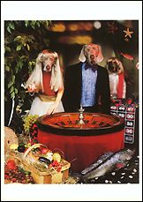 Don't Gamble on Fish or Produce. 1997 Postcards (Set of 12) - ImageExchange