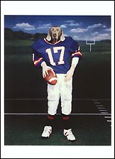 Varsity Postcards (Set of 12) - ImageExchange