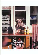 Hot Fudge, 1994 Postcards (Set of 12) - ImageExchange
