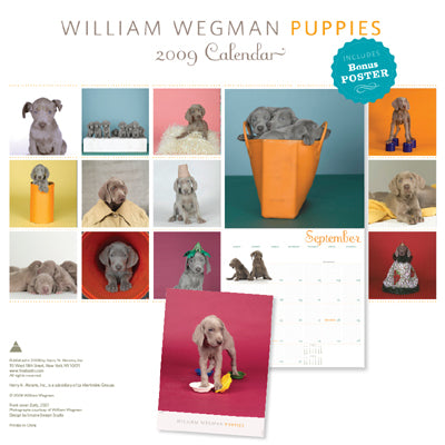 Puppies 2009 (with Poster)  (clearance) Wall Calendar - ImageExchange