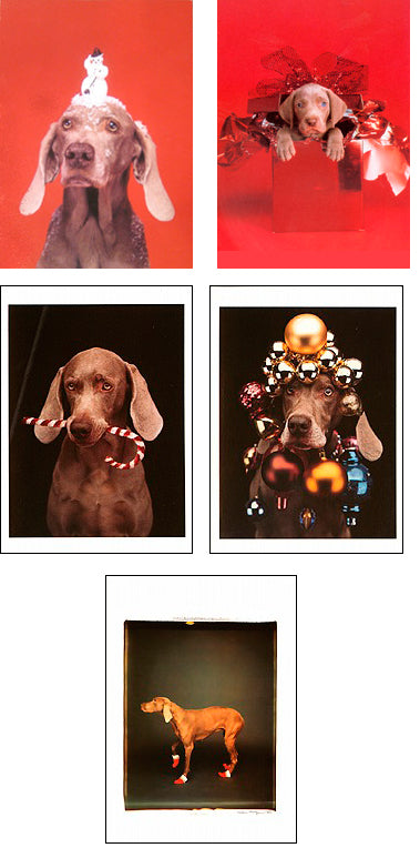 Favorites 2018 (Set of 20) Holiday Notecards (Set of 20) - ImageExchange