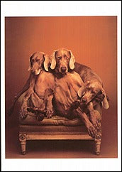Loveseat, 1994 Notecard - ImageExchange